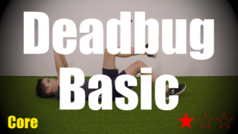 Deadbug Basic - Core - Strength and Conditioning
